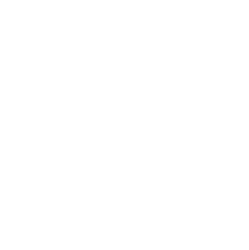 Palmetto Brewing Co.